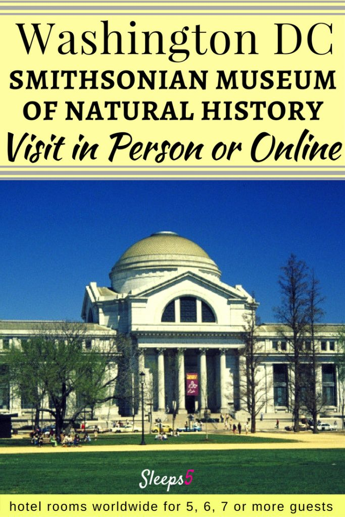 Visit DC Museum of Natural History