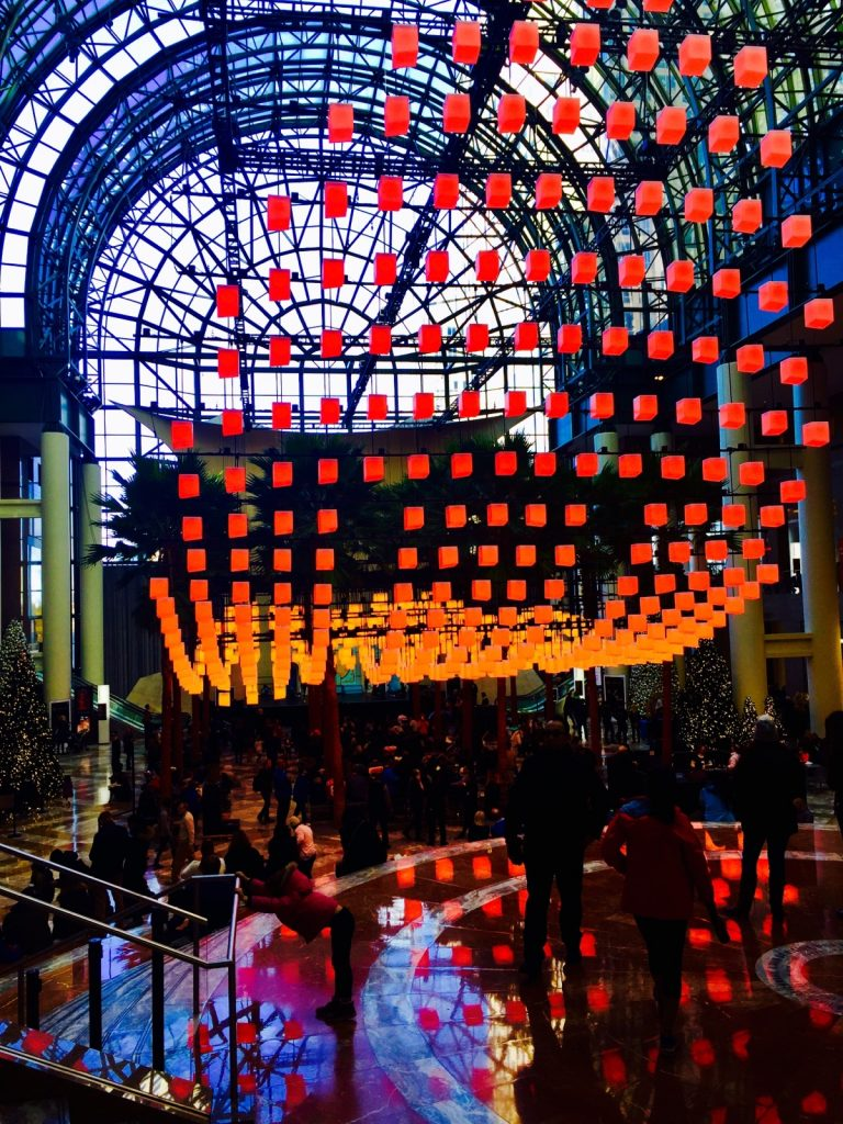 Holiday Lights in the Winter Garden - FiDi